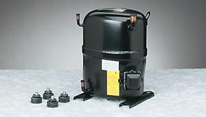 Bristol Compressors H23A623ABCA